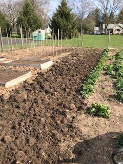 LCR garden
